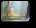 【時計修理】クォーツ式柱時計修理1---シチズンリズムクォーツ柱時計メルクリーナ修理 ケース・外観 修復再生修理【times-machine.com】《 時計修理 》【三田時計メガネ店@栃木県大田原市前田】